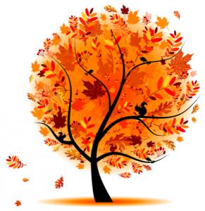 autumn-tree-rh